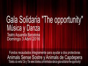 Gala Solidaria The Opportunity - Música y Danza a favor de los animales - Domingo 3 Abril 2016